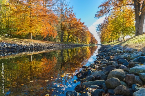 Fotografering clear body of water between yellow and green leaved trees
