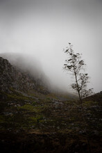 Mysterious, Foggy Scottish Hig...