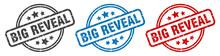 Big Reveal Stamp. Big Reveal R...