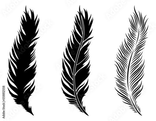 Fototapeta Set of  feathers