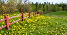 Rural Landscape. Wooden Fence ...