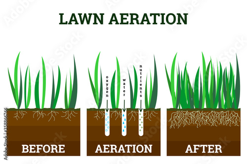 Fotografering Vector illustration of stages lawn aeration
