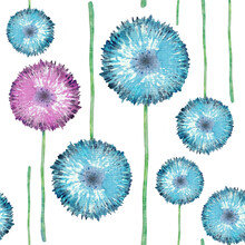 Hand-drawn Watercolor Summer Seamless Pattern Of Colorful Dandelions. Background For Design Design Of Cards, Weddings, Invitations, Wallpapers. Cian Wild Flowers