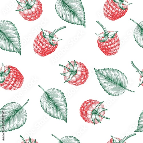 Fototapeta Raspberry seamless pattern. Isolated berry branch sketch .  Engraved style background design for tea, juice, natural cosmetics, candy with strawberry filling, farmers market,health care products.   obraz