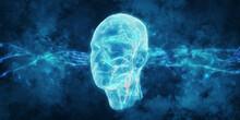 3D Human Head - Illustration