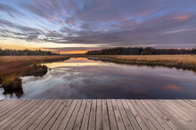 Boardwalk In Natural Heathland...