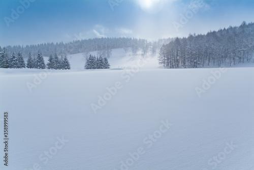 Valokuvatapetti 青空と雪原