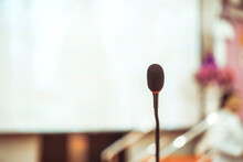 Microphone For Speaker Of Spee...