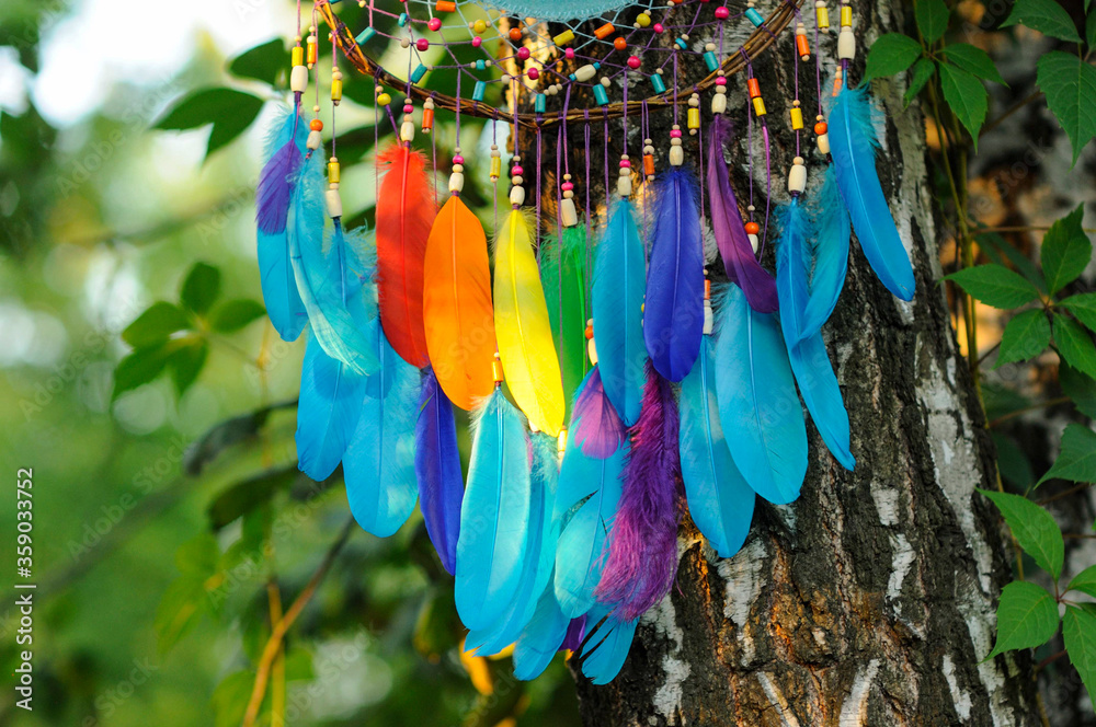 Details colorful rainbow feathers in park outdoors