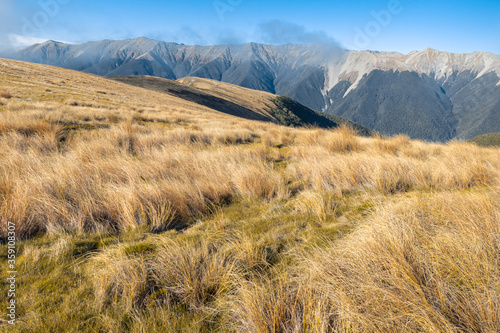Saint Arnaud Range in Nelson Lakes National Park, South Island, New Zealand Canvas Print