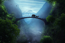 Old Bridge In The Fantasy Forest