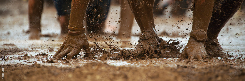 Fototapeta Mud race runners.Crawling,passing under a barbed wire obstacles during extreme obstacle race
