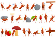 Ant Icons Set. Cartoon Set Of Ant Vector Icons For Web Design