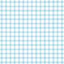 Blue Gingham Seamless Pattern....