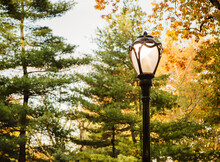 Lamp Post Detail In Central Park In Autumn, New York City