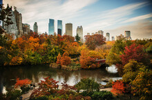 Autumn In Central Park, New Yo...