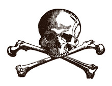 Human Skull And Crossed Bones,...