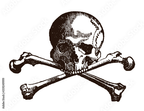 Photo Human skull and crossed bones, after an antique engraving from the 19th century