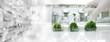 Leinwanddruck Bild - glove wearing hand of scientist three bottle of plant tissue culture in biotechnology science laboratory banner background