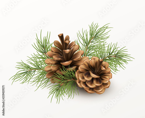 Fotografía Pine cone with a branch of spruce needles isolated on a white background