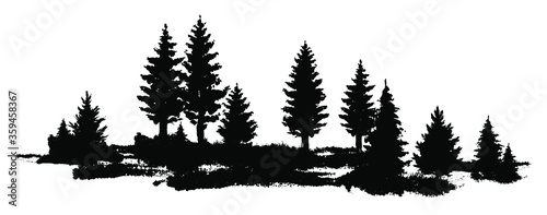 Obraz Vector composition Forest silhouette landscape. Black and white isolated elements Element for design. - fototapety do salonu