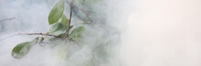 Close-up Of Plant Enveloped In...