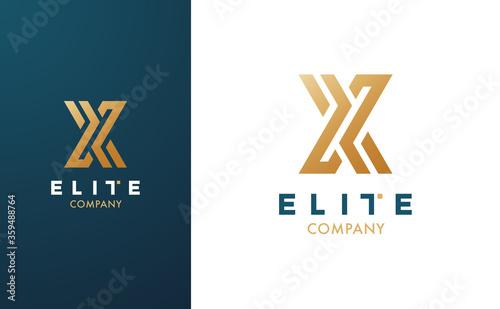 Obraz na plátně Premium Vector X Logo in two colour variations