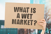 """The Question """" What Is A Wet M..."""