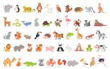 Cute Animal Set With Farm And ...