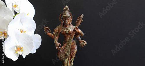 saraswati diosa hindú del conocimiento, la música, las artes, la sabiduría y la Canvas Print