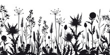 Seamless Horizontal Banner With Wild Flowers And Thistle Silhouettes.