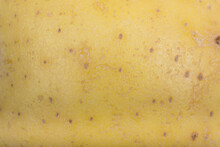 Light Brown Potato Skin Surface Texture Pattern Close Up Detail Macro. Abstract Background.