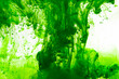 Leinwandbild Motiv green ink in water on white background