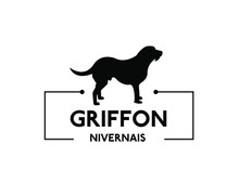 Griffon Nivernais - Dog