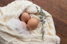 Chicken Eggs With Feather