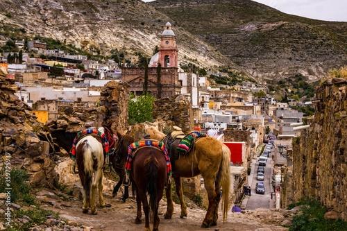 Caballos esperando a ser montados en un rancho de México. Wallpaper Mural