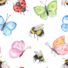 Watercolor Bugs And Insects Se...