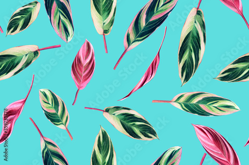 Leinwand Poster Watercolor painting colorful tropical green,pink leaves seamless pattern background