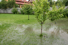 The Garden And Yard Are Floode...