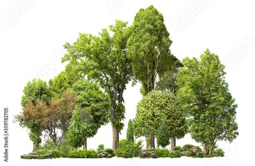Photo Cutout tree line