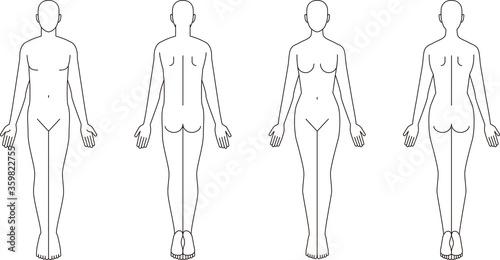 Obraz na plátně 人体のイラスト。男性女性の略図