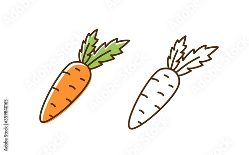 Set of fresh organic carrot in colorful and monochrome line art style Canvas Print