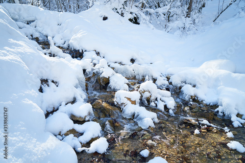 Mountain river in the winter forest. Canvas Print