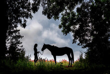 Silhouette Of A Horse And Rider In A Clearing Next To A Poppy Field.