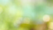 blurred colorful nature abstract background.