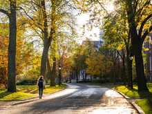 A Student Walks During The Day On A Road Of A Higher Education Institute In Cambridge, Massachusetts