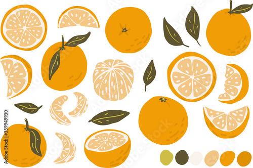 Orange, slice, peeled orange vector clipart set hand drawn childish flat style isolated on white background Canvas Print