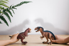Playing With Dinosaurs