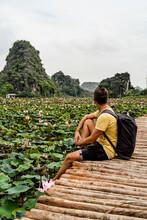 Vietnam, Ninh Binh Province, N...