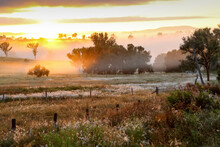 A Foggy And Colourful Sunrise In Rural Queensland.